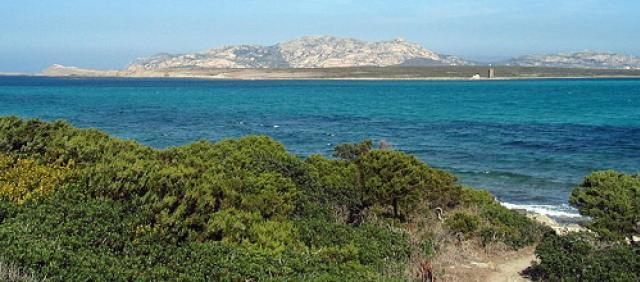 Vue sur l'île de l'Asinara