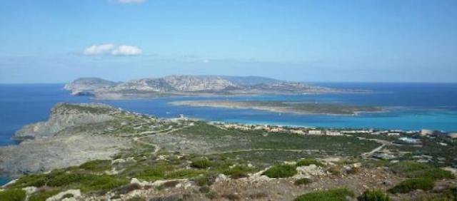 Vue sur l'Asinara