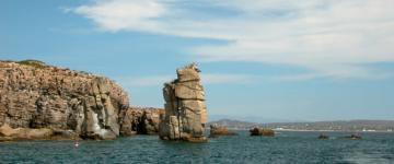 IMG L'île de San Pietro – Voyage à Carloforte entre plages et pêcheurs