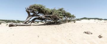 IMG Costa Verde – Notre sélection des plus belles plages